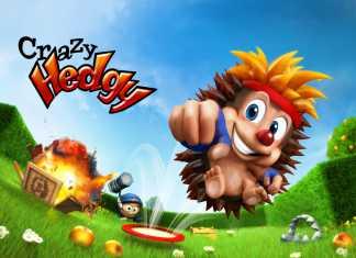 [Baisse de prix] Vivez une aventure fantastique avec Crazy Hedgy sur iPad  1